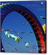 Go Fly A Kite 2 Acrylic Print