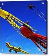 Go Fly A Kite 7 Acrylic Print