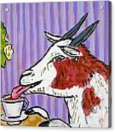 Goat At The Cafe Acrylic Print by Jay  Schmetz