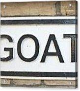 Goat Acrylic Print by Tom Gowanlock