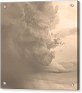 Gobbled Up By A Storm  Sepia Acrylic Print