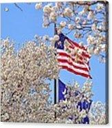 God Bless America March 2014 Acrylic Print