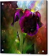 Goddess Of The Rainbow Acrylic Print