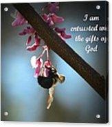God's Gifts Acrylic Print