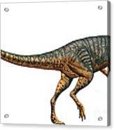 Gojirasaurus Dinosaur Acrylic Print