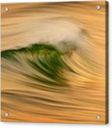 Gold And Green C6j4244 Acrylic Print