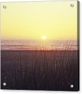 Gold Beach Sunset Acrylic Print