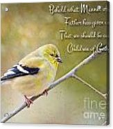 Gold Finch On Twig With Verse Acrylic Print