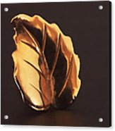 Gold Leaf Acrylic Print by Rona Black