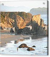 The Oregon Coast Acrylic Print