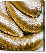 Golden Art Acrylic Print