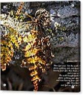 Golden Autumn Fern Acrylic Print