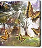 Golden Butterfly Rays Acrylic Print by Alixandra Mullins