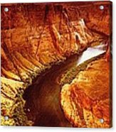 Golden Canyon Acrylic Print
