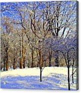Golden Central Park Acrylic Print