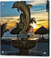 Golden Dolphins  Acrylic Print