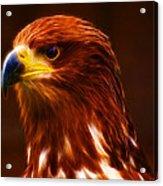 Golden Eagle Eye Fractalius Acrylic Print