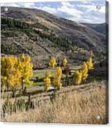 Golden Fall In Montana Acrylic Print