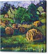 Golden Fields Of Door County Acrylic Print