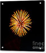 Golden Fireworks Flower Acrylic Print