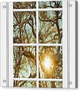 Golden Forest  Branches White 8 Windowpane View Acrylic Print
