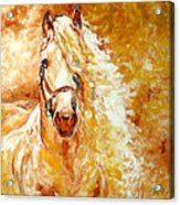 Golden Grace Equine Abstract Acrylic Print by Marcia Baldwin