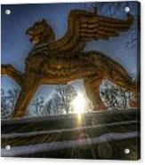 Golden Griffin Acrylic Print
