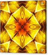 Golden Harmony - 3 Acrylic Print
