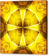Golden Harmony - 4 Acrylic Print