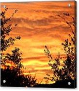 Golden Hour Sunset Acrylic Print