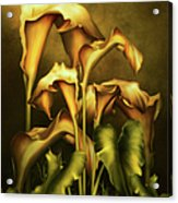 Golden Lilies By Night Acrylic Print