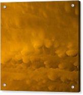 Golden Mammatus Acrylic Print