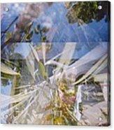 Golden Mean Holga Garden 1 Acrylic Print by Carolina Liechtenstein