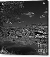 Golden Pavilion In Infrared Acrylic Print