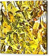 Golden Pecan Leaves Abstract Acrylic Print