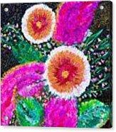 Golden-pink Acrylic Print