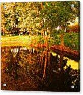 Golden Pond 4 Acrylic Print