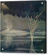 Golden Pond Lily Acrylic Print by Bedros Awak
