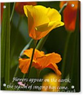 Golden Poppy Floral  Bible Verse Photography Acrylic Print