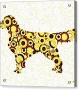 Golden Retriever - Animal Art Acrylic Print