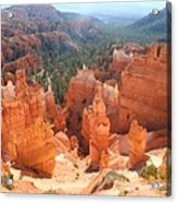 Golden Rocks Of Bryce Canyon  Acrylic Print