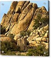 Golden Rocks Of Hidden Valley Acrylic Print