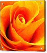 Golden Rose - Digital Painting Effect Acrylic Print