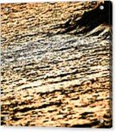 Golden Sea Acrylic Print