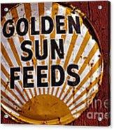 Golden Sun Feeds Acrylic Print