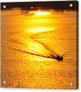 Golden Sun Acrylic Print