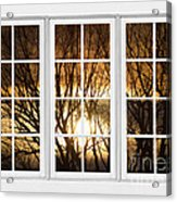 Golden Sun Silhouetted Tree Branches White Window View Acrylic Print