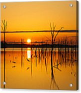 Golden Sunrise IIi Acrylic Print