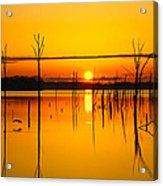 Golden Sunrise Iv Acrylic Print