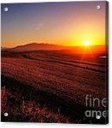Golden Sunrise Over Farmland Acrylic Print